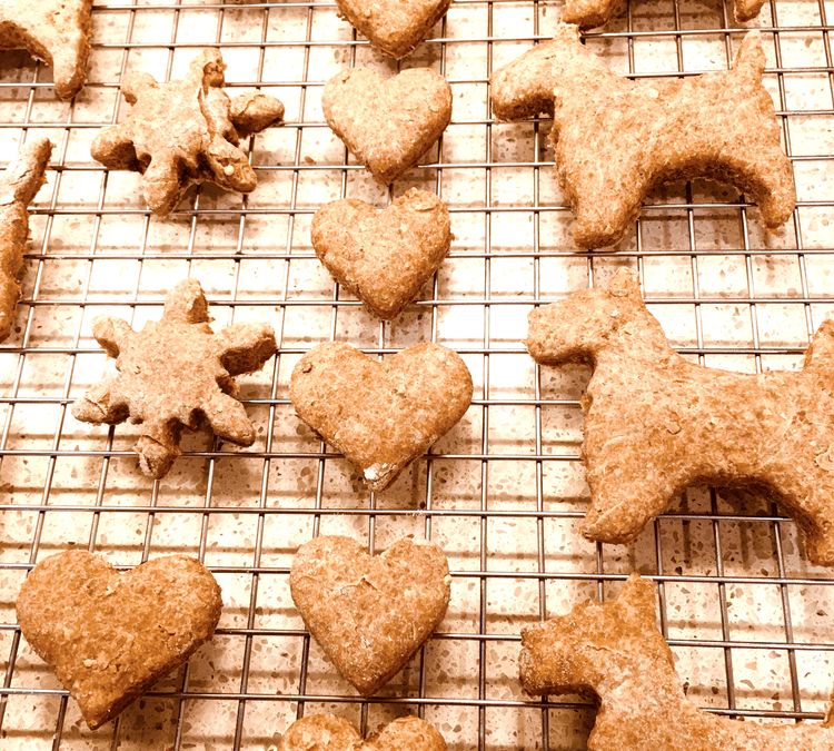 Angel Cookies & Puppy Kisses